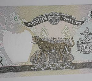 Foreign currency of Nepal-alx