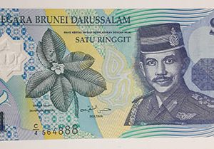 Foreign banknotes of a very valuable foreign polymer design-dfg