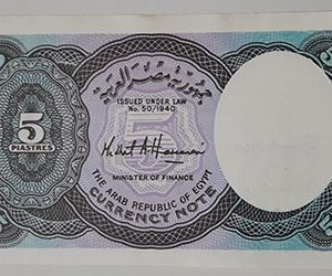 Foreign currency of Egypt-zlq