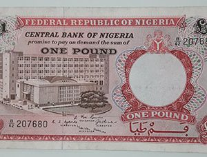 Nigerian foreign currency is a very rare design-yfn
