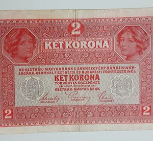 Foreign banknote of Austria in 1917-ddp