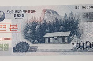 Foreign banknote of the beautiful design of North Korea in 2008-ffl
