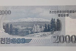 Foreign banknote of the beautiful design of North Korea in 2008-lfl