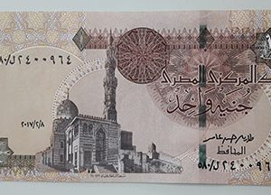 Egyptian foreign banknotes with a very beautiful design in 2017-edd