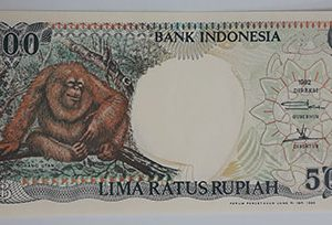 Indonesia foreign banknote, very beautiful design, 1992-yvv