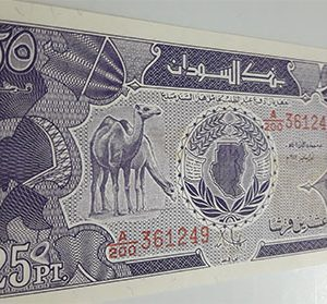 Very rare banknote of the old Sudanese type, rare type, 1987-pkk