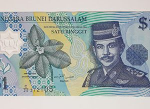 Brunei foreign polymer banknotes-fgh