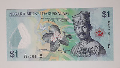 Foreign banknotes of beautiful and rare design of Brunei country-hjk