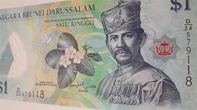 Foreign banknotes of beautiful and rare design of Brunei country-jkl