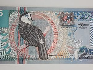 Foreign banknote of a very beautiful design of Suriname in 2000 (bank quality)-vbn