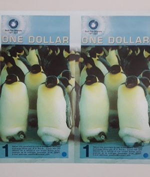 Anne Cut polymer foreign banknote from the North Pole, a beautiful design of 2011 (m)-qaz