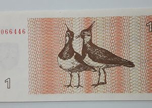 Very beautiful and rare foreign banknote of Lithuania in 1992 (m)-qmm