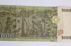 Foreign banknotes of Syria quality (non-bank)-vfr