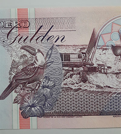 Foreign banknote of the beautiful design of Suriname-cdl
