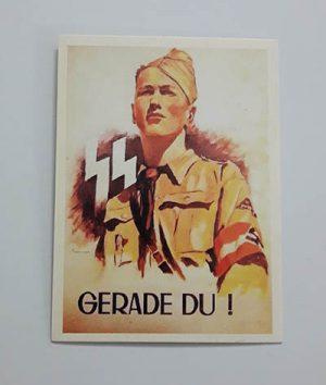 Nazi Germany Commemorative Postcard uuu