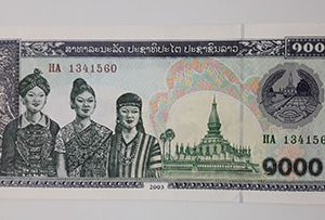 Collectible foreign banknote of Sri Lanka in 2003-gxx