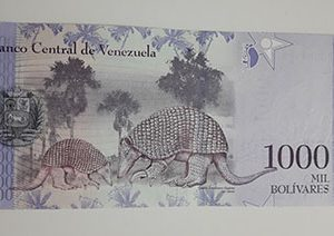 Collectible foreign banknote of the new type of Venezuela, 1000 units, 2017-bay