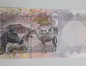 Collectible foreign banknotes of beautiful and rare design in Qatar in 2020-fae